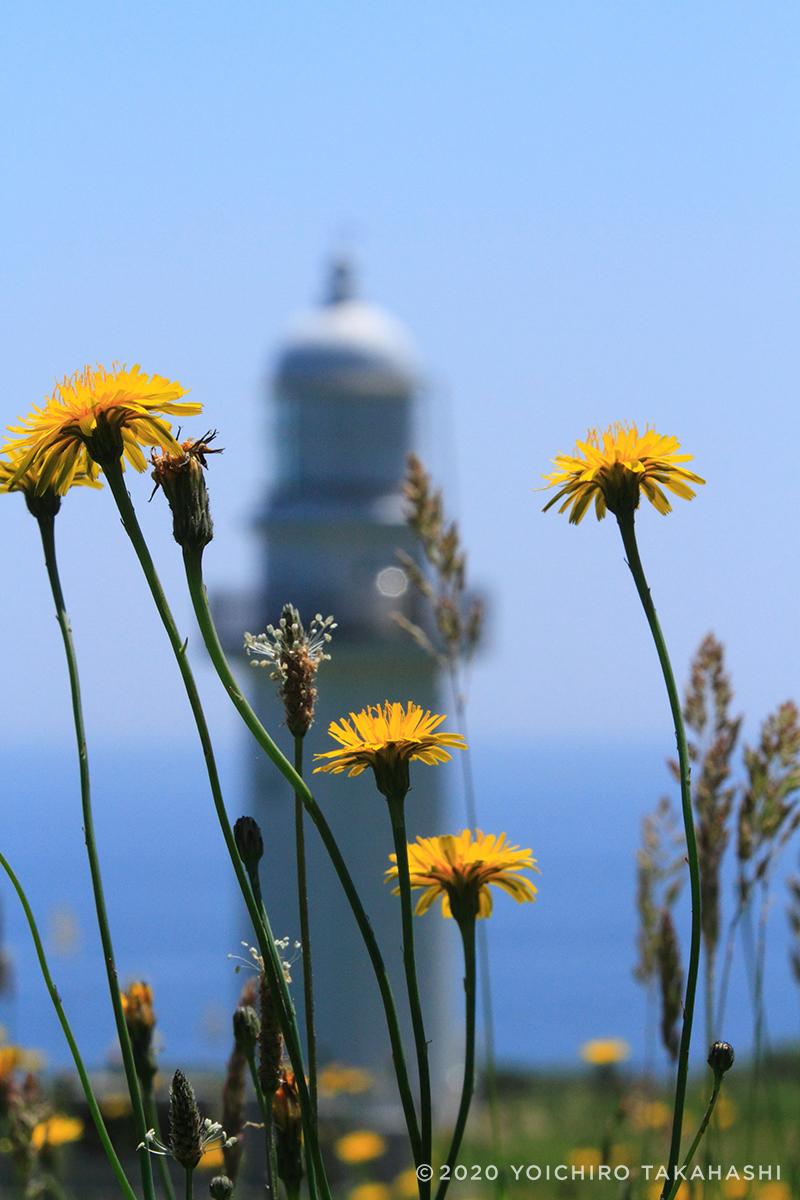 恵山岬(えさんみさき)灯台