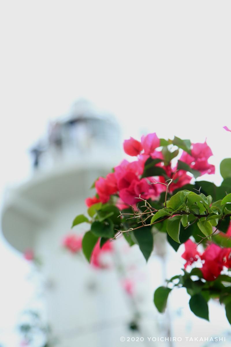 Cape Rachad(ラチャド岬)灯台